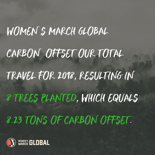 carbon offset.png
